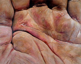 the hand of the artist after gardening ( with blisters ) # 07  oilpaint on MDF 40 x 50 cm 2013