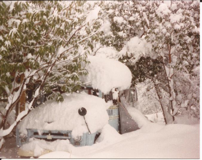 One winter in the late 1980s, my mom moved to San Francisco for several months because she couldn't get up the road. For a while she was a roommate of Steven Roback of the band, Rain Parade. (Private photo from Barbara's own collection. All rights reserved.)