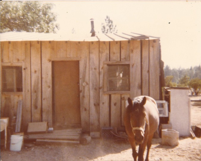 In 1976, when the weather got wet and cold, my mom secured a more inviting living space for us which was offered rent free in exchange for milking goats twice a day. It was a 20 foot by 20 foot tin cabin on the edge of a large demolition derby car junkyard. The cabin didn't have running water, heat or electricity, but during the two years we lived here, my mom built a spring box and hooked up running water; she covered the tin siding with wood; built two lofts for sleeping; and welded an old barrow into a wood heater. We used propane light, had no phone, and walked miles to visit friends. My sister and I loved it here. We played in the junkyard and helped with the milking. (Private photo from Barbara's own collection. All rights reserved.)